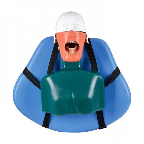 Dental Manikin head Phantom Head for Dental Patient Simulator Unit Attach on Chair