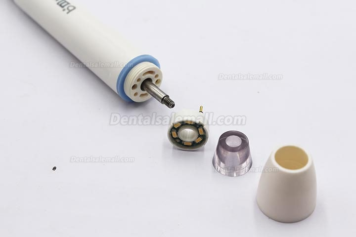 BAOLAI L1 Sealed Plastic Handpiece for Ultrasonic Scaler