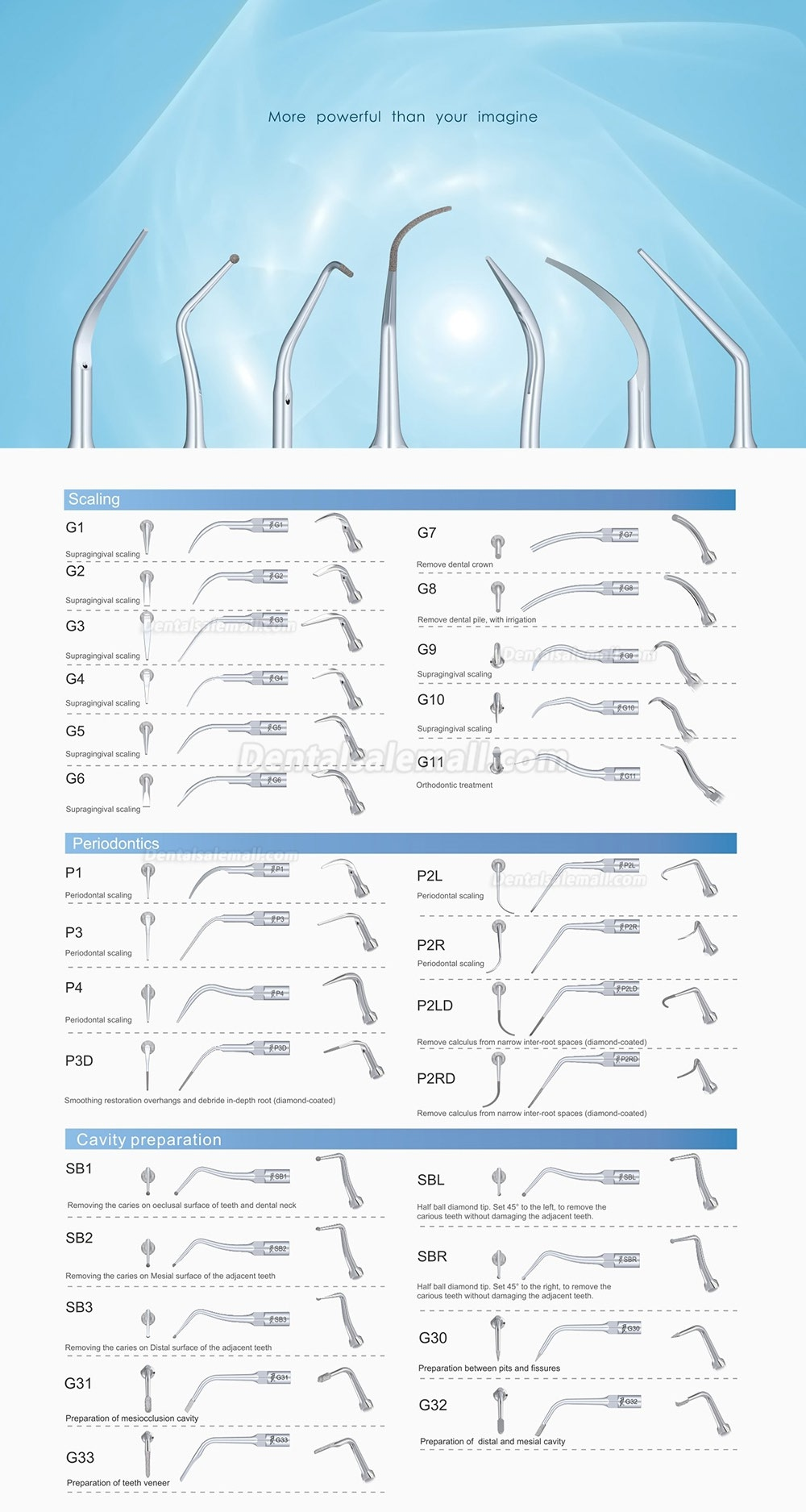 10Pcs Woodpecker EMS Cavitron Ultrasonic Scaler Endodontic Tip E1 E2 E3 E3D E4 E4D E5 E5D E8 E9 E10D E11 E11D E14