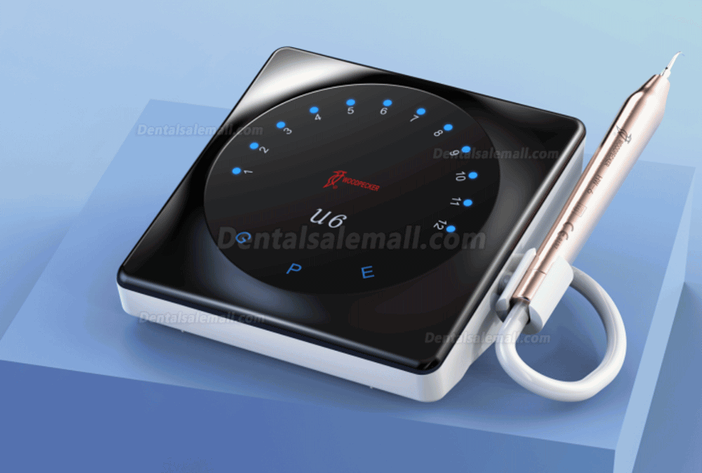 Woodpecker U6 LED Smart Ultrasonic Scaler Root Canal Treatment Touch Screen