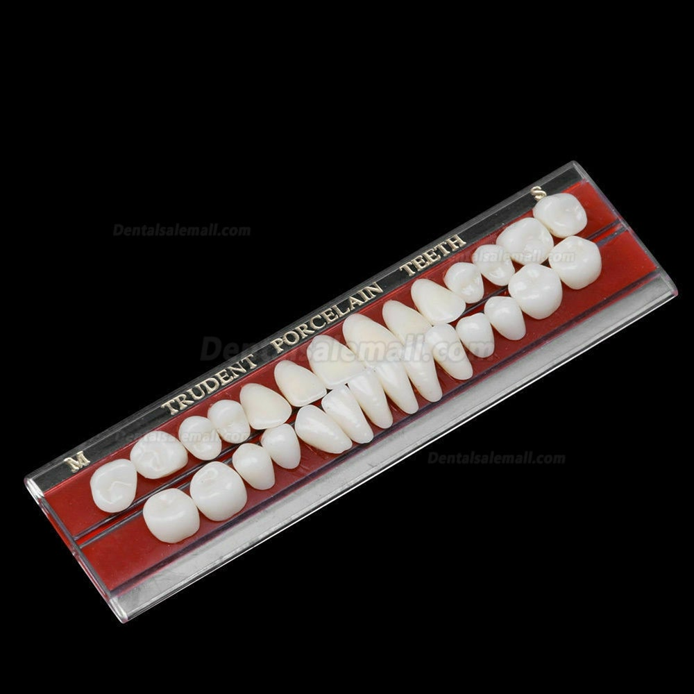 5 Set Alloy Pin Dental Materials Porcelain Teeth Tooth Shade Guide Dentures 24 #